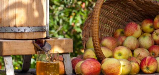 Opération jus de pommes web