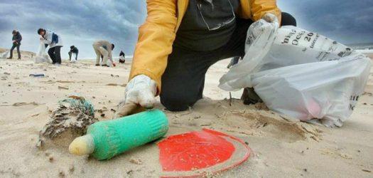 Collecte des déchets - plage