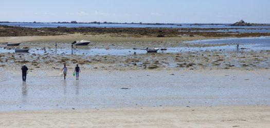 Pêche à pied Locarec