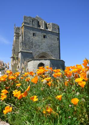 Visite libre de la Tour Carrée et exposition de cartes postales anciennes